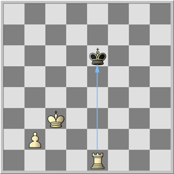 šah topom